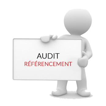 audit referencement.png